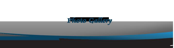 Photo Gallery Header image
